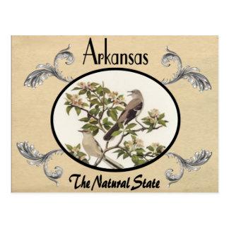 Vintage kijk de Oude Staat van Arkansas van het Briefkaart