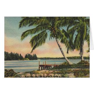 Vintage kokospalmen kaart