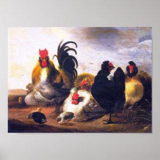Vintage kunst-dierlijk-vogel-kip-schildert poster