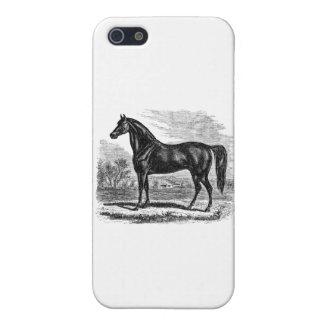 Vintage Paard 1800s - de RuiterSjabloon van Morgan iPhone 5 Hoesje