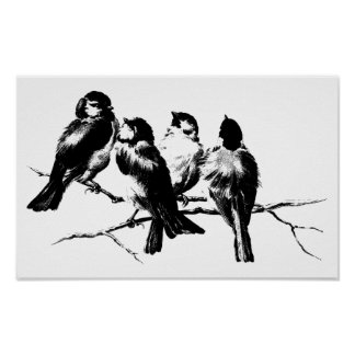 Vintage Pluizige Vogels op Takken Poster