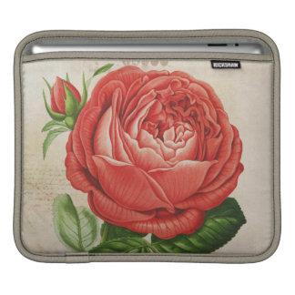 Vintage Rode Hybride Eeuwig, Paul Neyron Rose iPad Beschermhoes