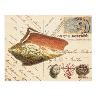 Vintage shell van de Kroonslak en Briefkaart