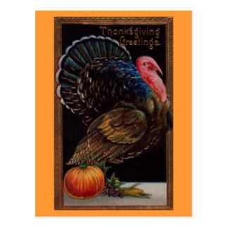 Vintage Thanksgiving Turkije Briefkaart