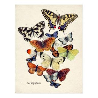 Vintage Vlinders Briefkaart