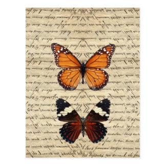 Vintage vlinderscollectie wens kaart