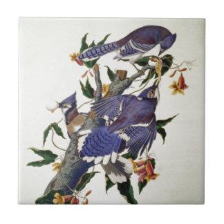 Vintage Vogels Tegeltje
