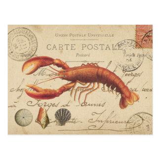 Vintage Zeekreeft en zeeschelpenbriefkaart Briefkaart