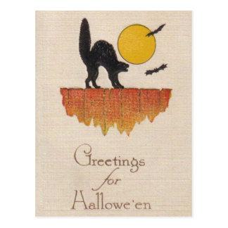 Vintage Zwarte Kat, Doordringende kreet, Halloween Briefkaart