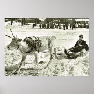 Vintage Zweden, de ar van het Rendier, Poster