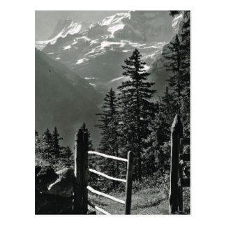 Vintage Zwitserland Jungfrau, Bernese Oberland Briefkaart