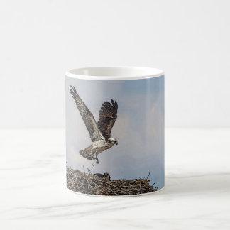 Visarend in een nest koffiemok