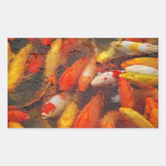 Vissen Rechthoekige Sticker