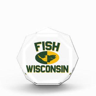 Vissen Wisconsin Acryl Prijs