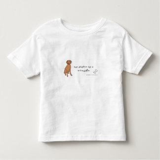 vizsla kinder shirts