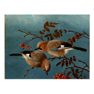 Vlaamse gaaien - Twee Vogels in een Boom Briefkaart