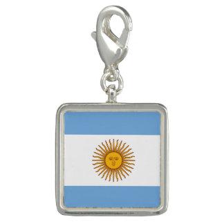 Vlag van de Charme van Argentinië Foto Charms
