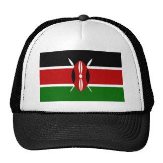Vlag van de Wereld van Kenia de Nationale Pet Met Netje