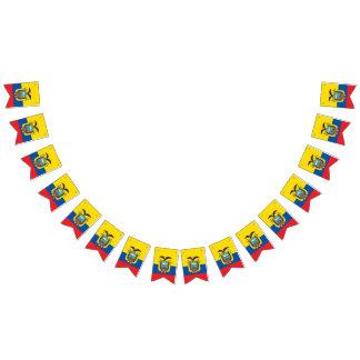 Vlag van Ecuador Vlaggetjes
