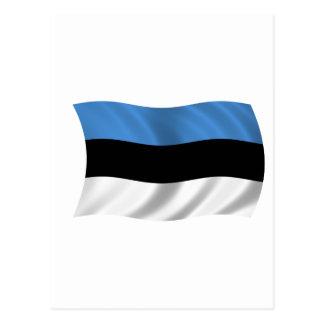 Vlag van Estland Briefkaart