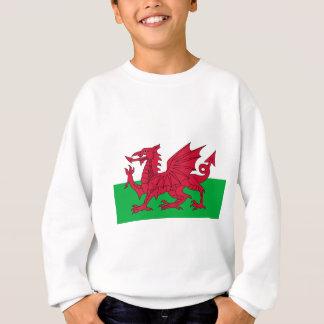 Vlag van Wales - de Rode Draak - Baner Cymru Trui
