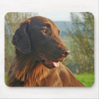 Vlak Met een laag bedekte de hond mooie foto van d Muismat
