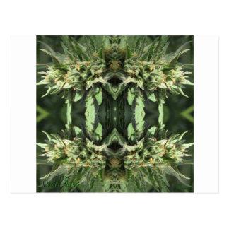 Vlammen 1 van het kristal briefkaart