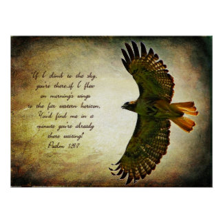 Vleugels van het Poster van de Ochtend