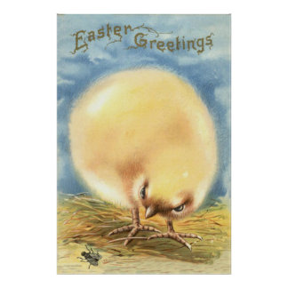 Vlieg van het Kuiken van Pasen van Puffball de Plu Poster