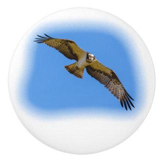 Vliegende visarend met een doel in gezicht keramische knop