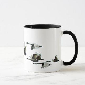 Vliegende Zwanen, de Kop van Vogels