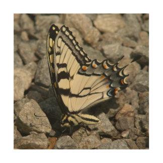 Vlinder, de Houten Druk van de Foto Hout Afdruk