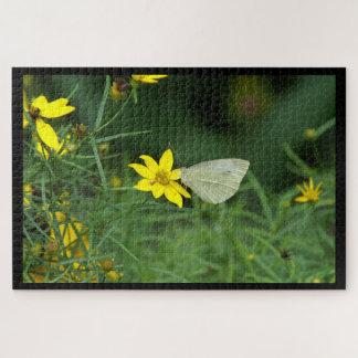 Vlinder, het Raadsel van de Foto Puzzel