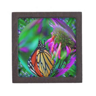Vlinder in de Doos van de Gift van de Kunst van de Premium Decoratiedoosje
