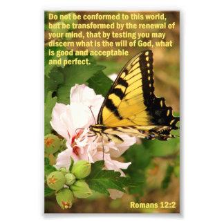 Vlinder met het 12:2 van Romeinen Foto Afdruk