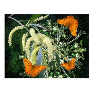 vlinders en acacia horizontaal briefkaart