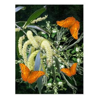 vlinders en acacia verticaal briefkaart