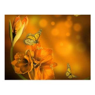 vlinders oranje briefkaart