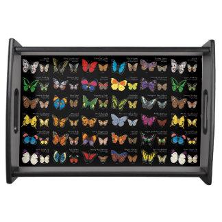 Vlinders van de (donkere) Wereld Dienblad