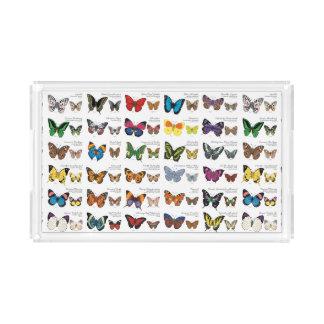 Vlinders van de Wereld Acryl Dienblad