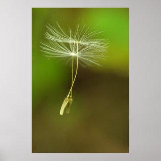 Voel vrij - de vliegende zaden van de Paardebloem Poster