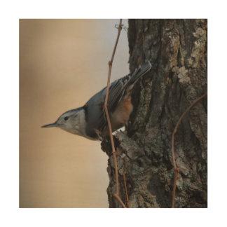 Vogel, de Houten Druk van de Foto Hout Afdruk