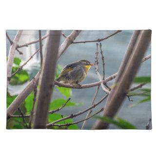 Vogel in een boom placemat