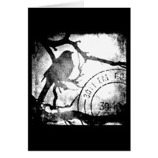 Vogel op een Zwart-wit Tak Wenskaart
