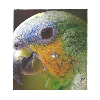 Vogel van de Vogel van de Dieren van Amazonië van Notitieblok