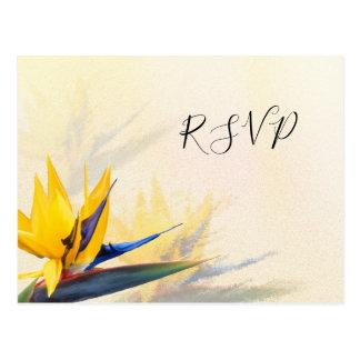 Vogel-van-paradijs de Hawaiiaanse Briefkaarten van