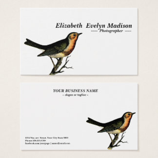 vogel vintage gravure visitekaartjes