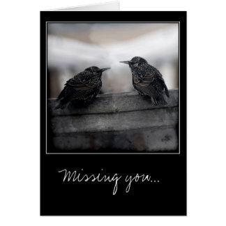 Vogels bij het Missen van u wenskaart