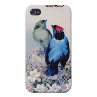 Vogels in nesthoesje iPhone 4 hoesje