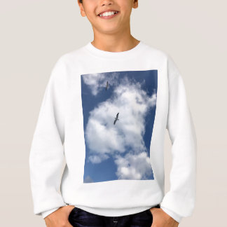 Vogels in Wolken Trui